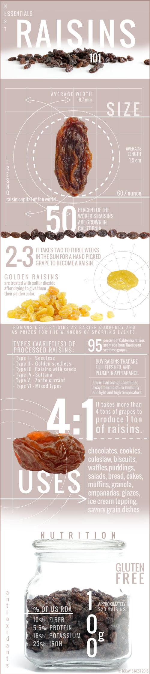 Raisin Inforgraphic by Sam Henderson of Today's Nest