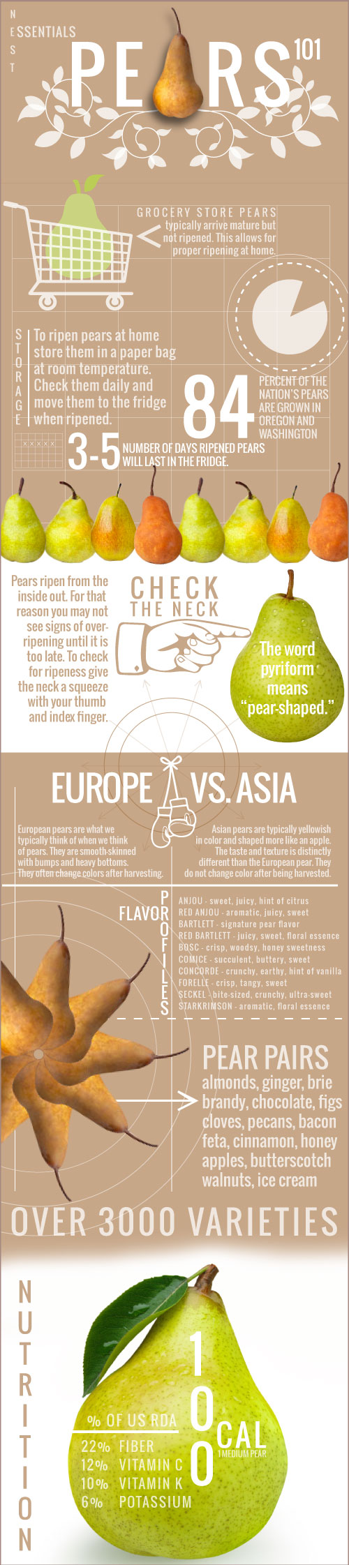 Pear infographic by Sam Henderson of Today's Nest