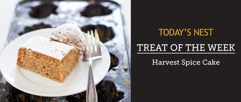 Harvest Spice Cake by Sam Henderson of Today's Nest