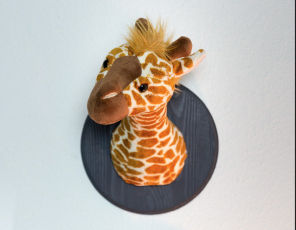 Mounted Stuffed Animal Heads by Sam Henderson of Today's Nest for DIY Network