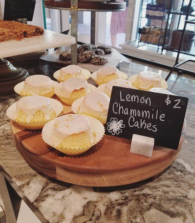 Lemon chamomile tea cakes in Cambridge today 🌼🍋#hautecoffee #hautemade #lemon #chamomile #tea #cake #dessert #cafe #eastcambridge 📷🍰 @pieprofessional
