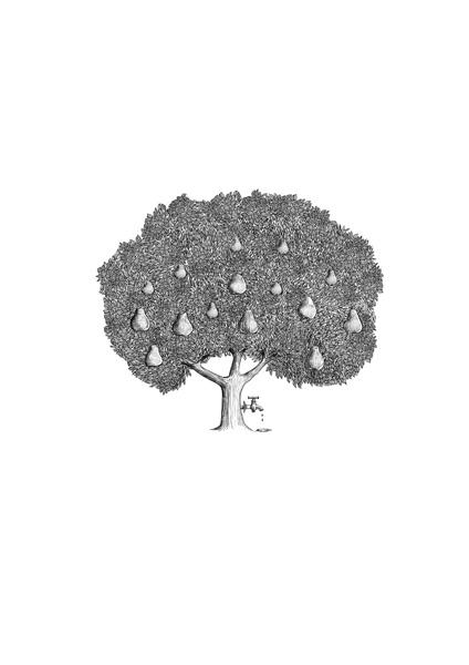 pear tree_1.jpg