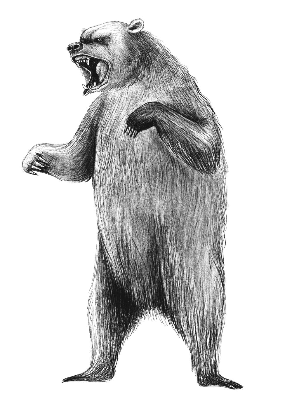 Evolve_Bear.jpg