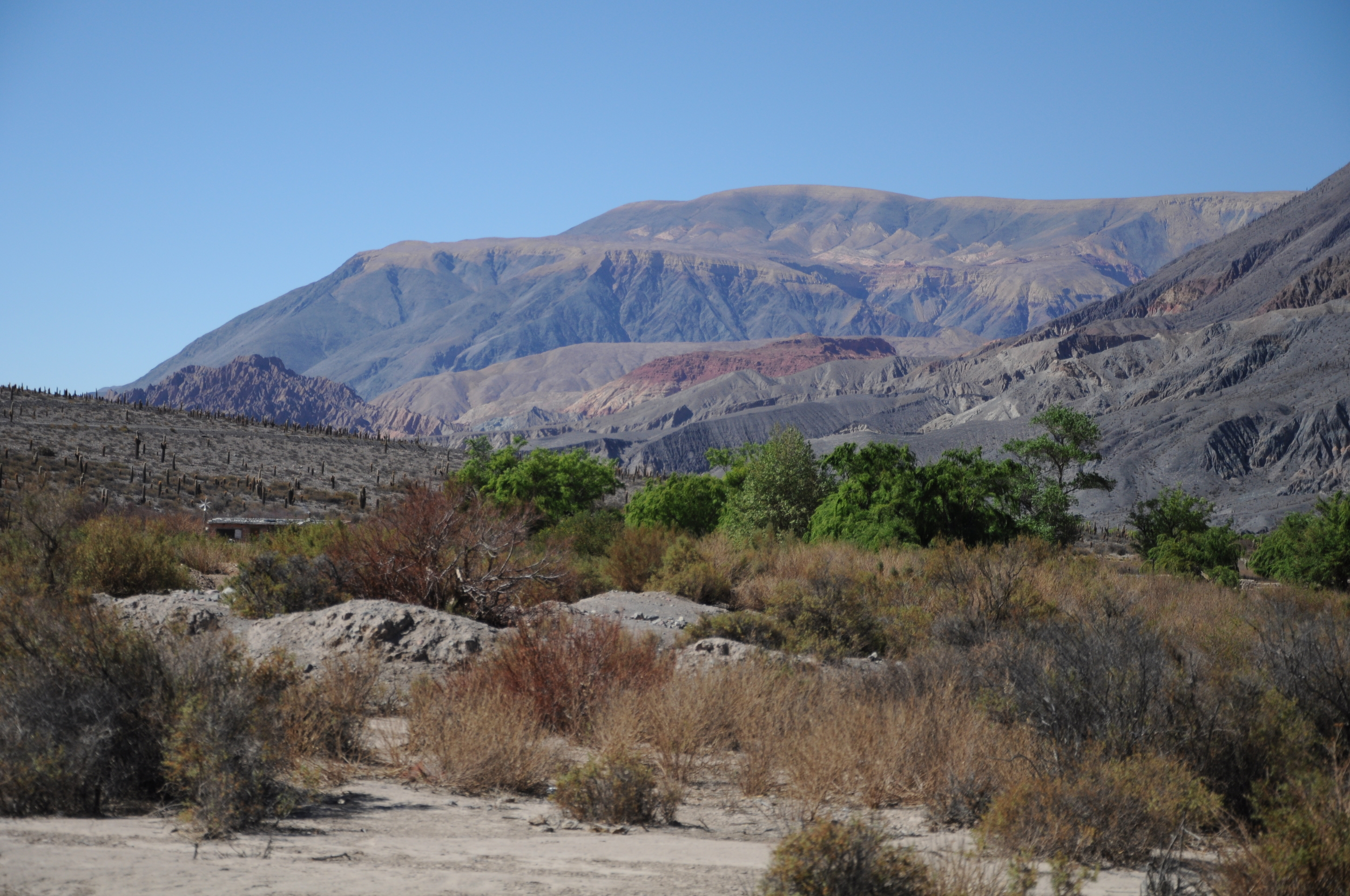 In the Foothills of Salta, Argentina