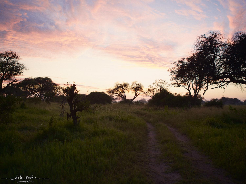 Botswana_ 0011.jpg