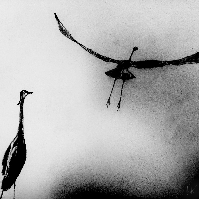 Bird_Drawing_1_wk.jpg