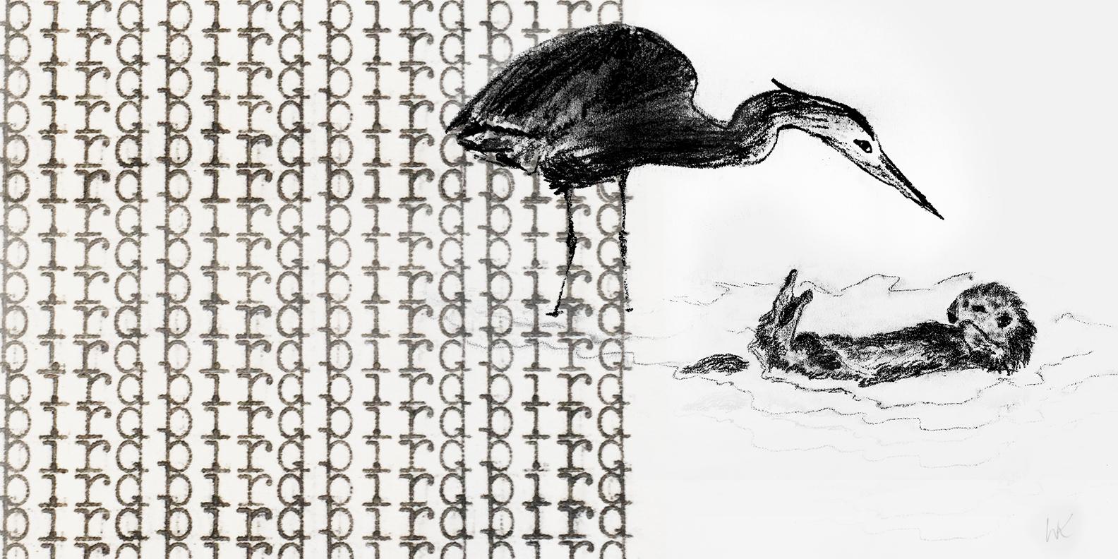 Bird_Drawing_2_wk.jpg