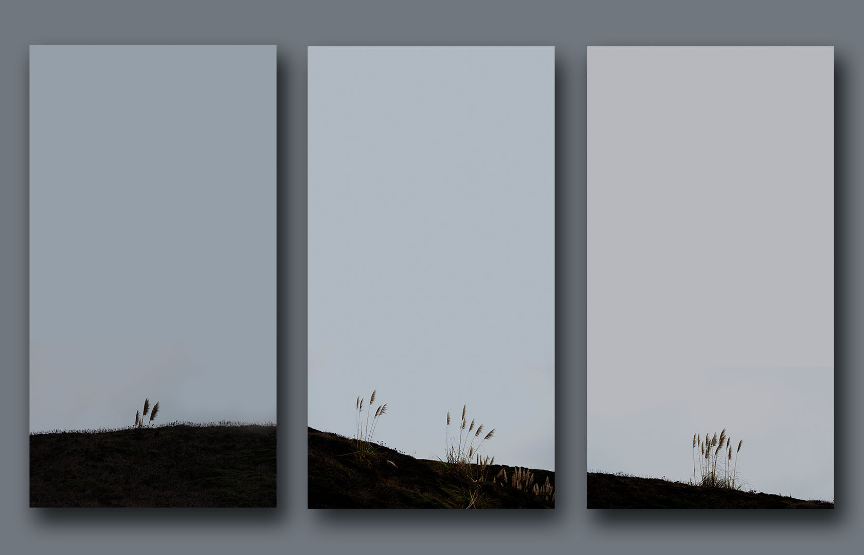 Western Edge Triptych—is a result of my frequent travels down the Great Highway in San Francisco,  along the Pacific coast. The triptych has been constructed based on my own memory and emotional response to an exquisite scenery I frequently admire  in the early morning or late afternoon hours.