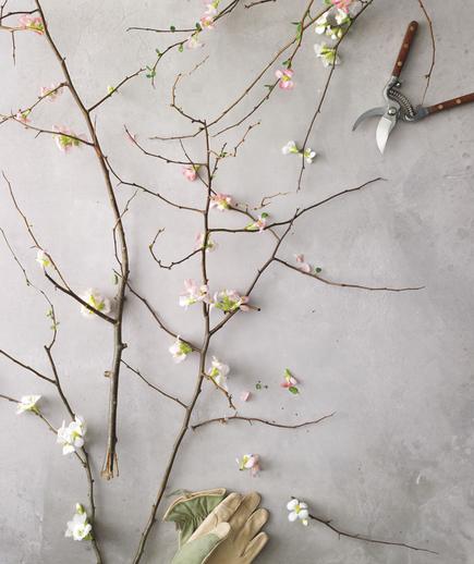Tom Borgese_How To Arrange Spring Flowers 3