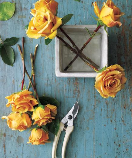Tom Borgese_How To Arrange Spring Flower 5