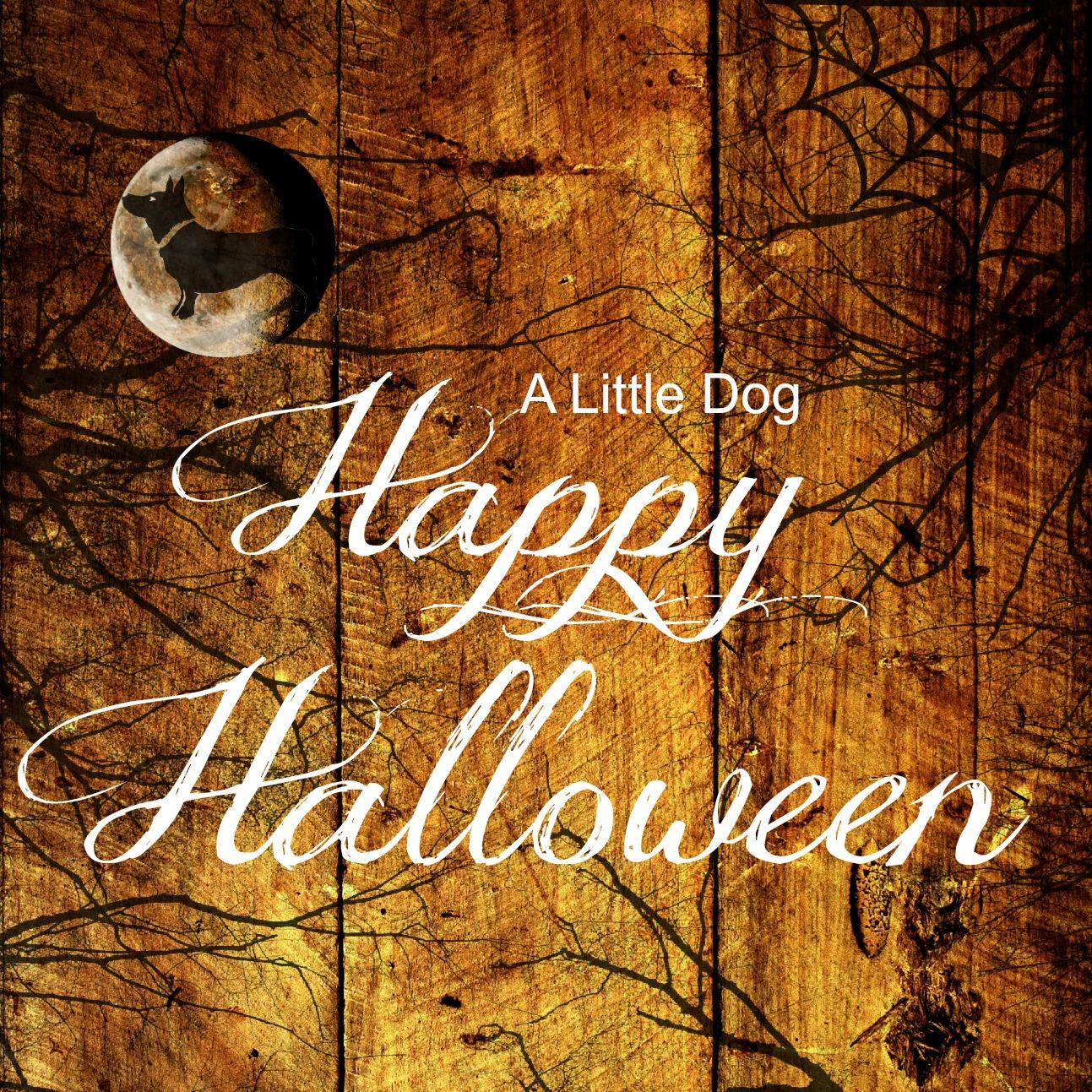 happy halloween 2012.jpg