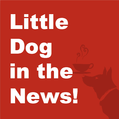 Little Dog is in the news!