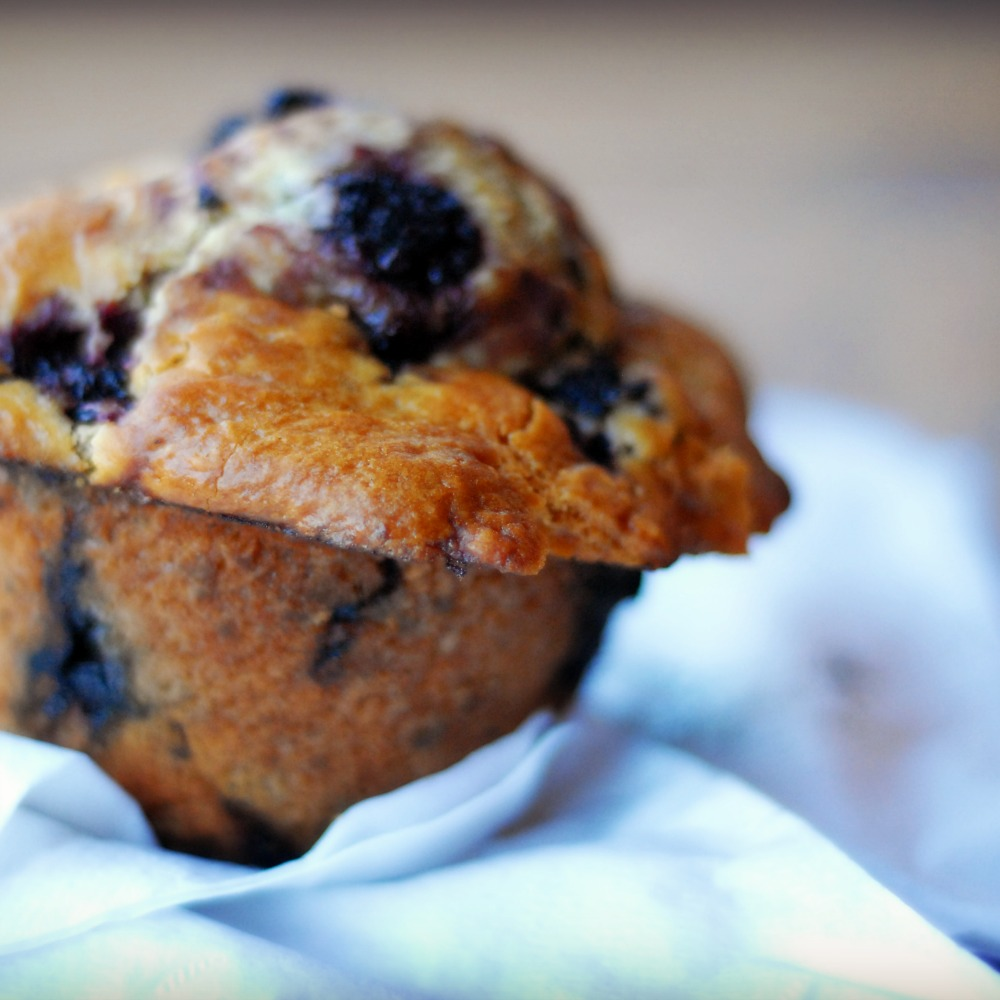 blackberry muffin.jpg