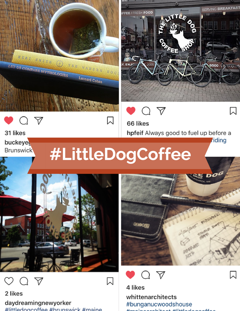LittleDogCoffee on Instagram
