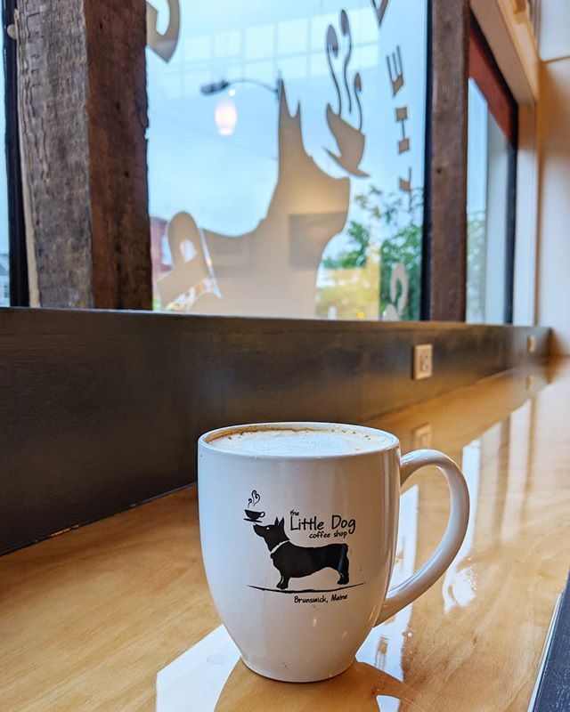 We're back! Open today 6-6 ☕🐾