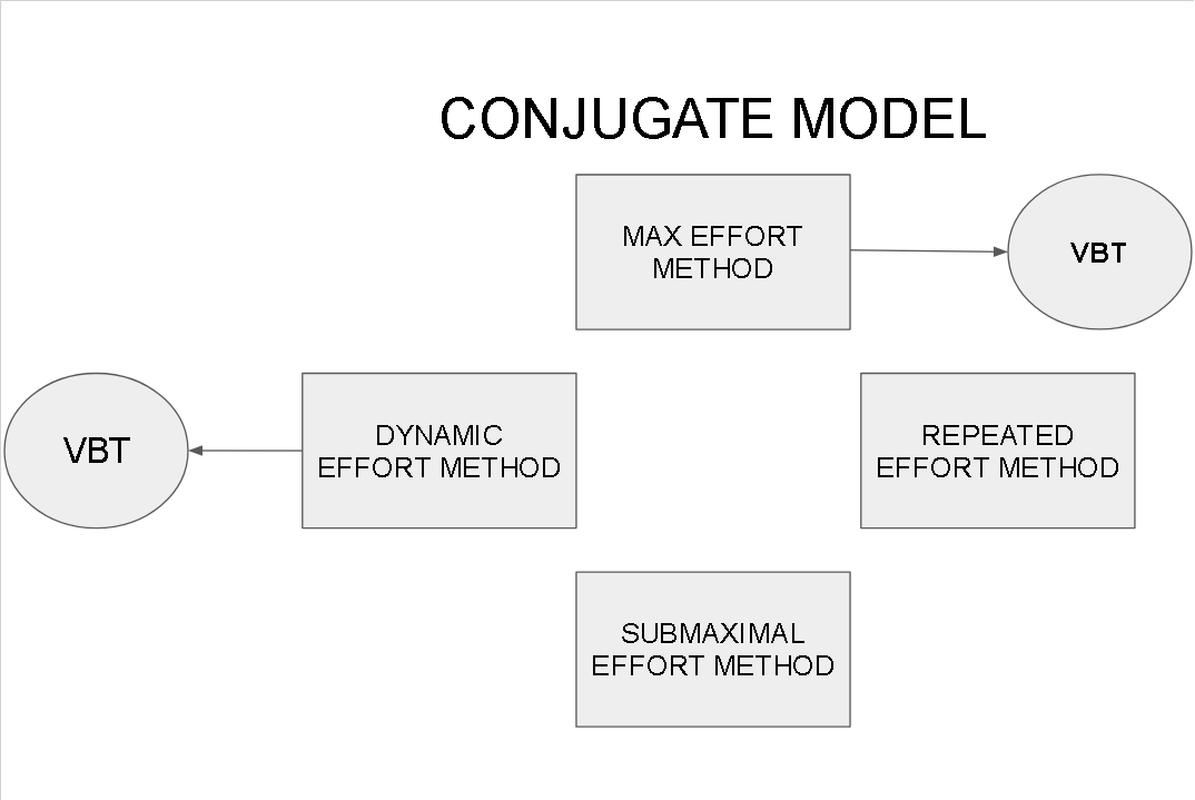 Figure 2: Example of Conjugate model and where velocity-based training can be applied.