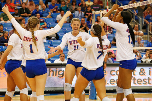 Image 1. UT-Arlington Women's Volleyball team.