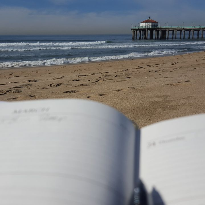 January 21: I love this photo—booking March tour dates while soaking up the sun at Manhattan Beach. Even when she's relaxing she's still working. I only have two modes: on and asleep. So impressed.