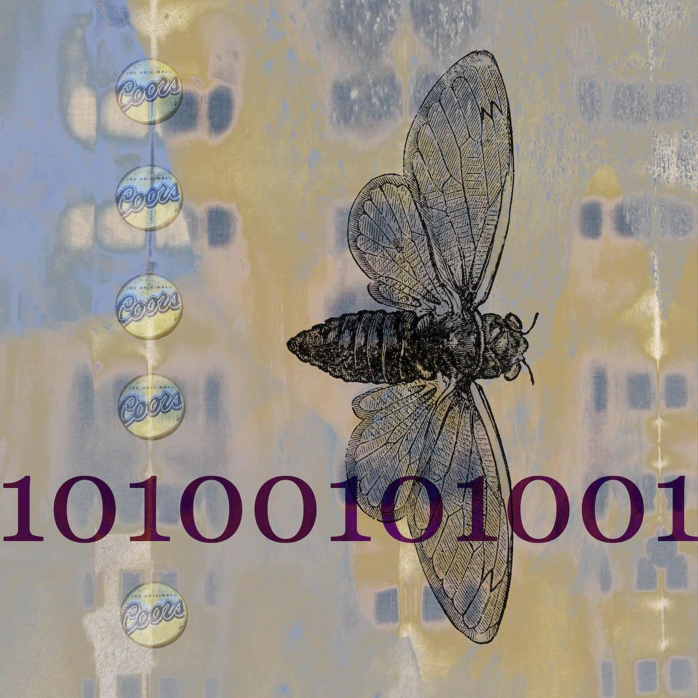 mckellar_insect_06.jpg