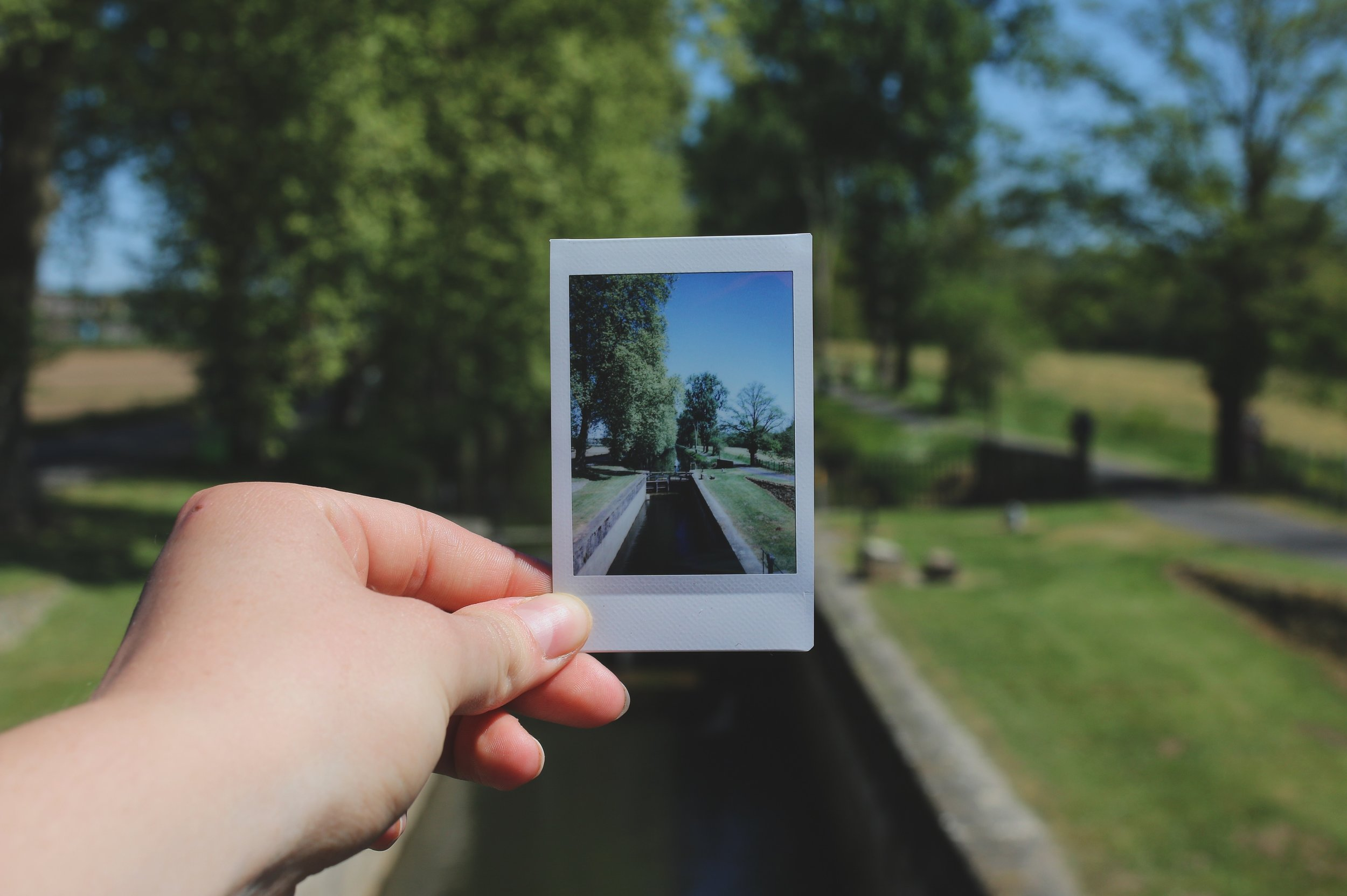 Image of hand holding Polaroid photo of landscape scene