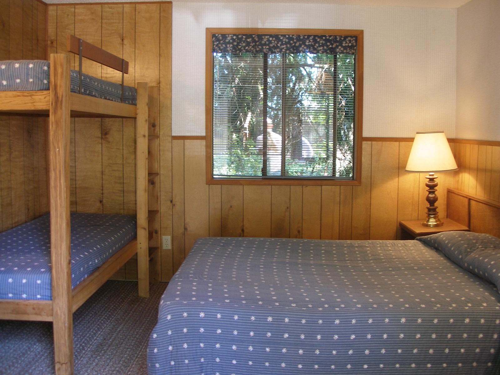 woodland-cabin-2.jpg