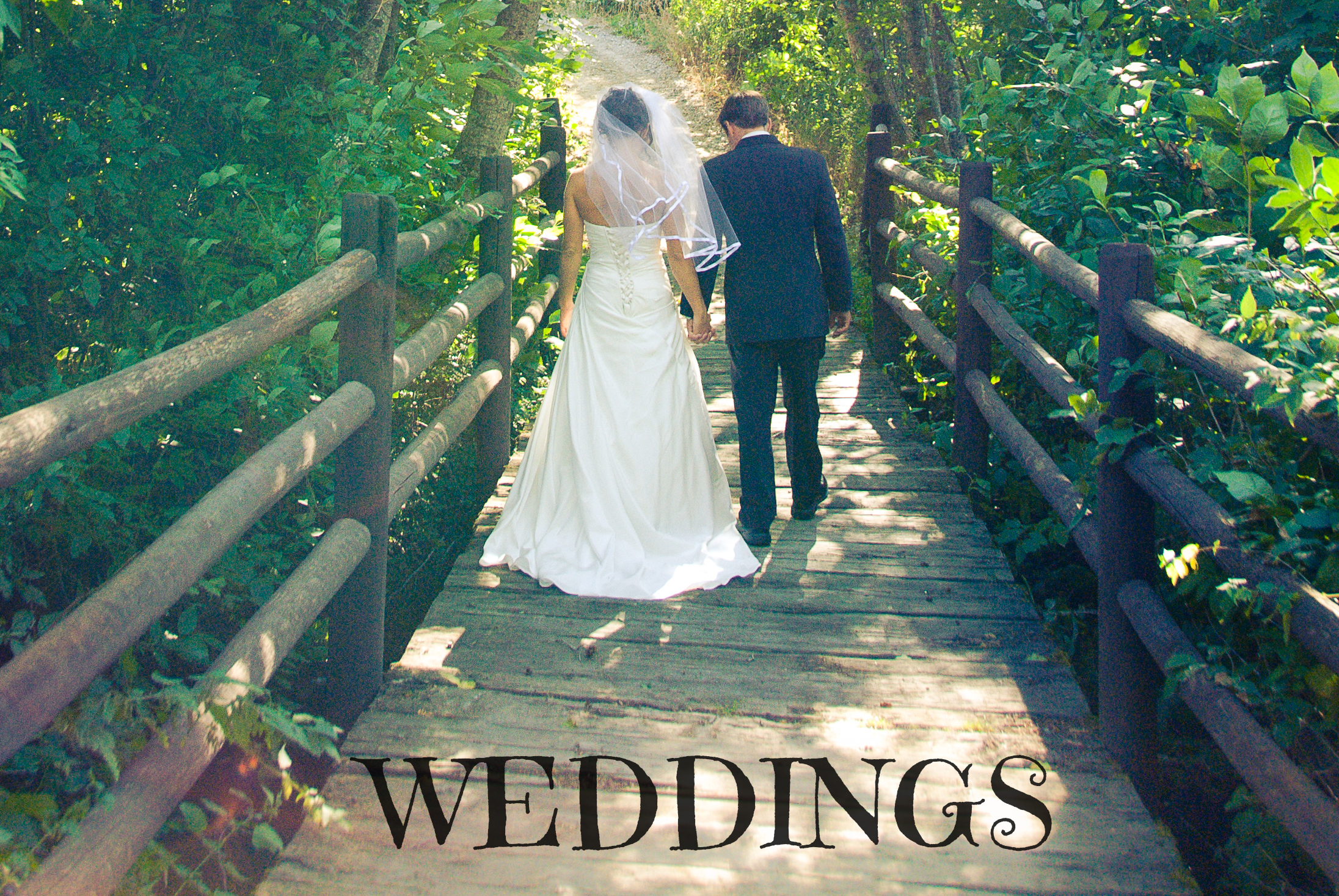 WEDDINGS HEADING.jpg