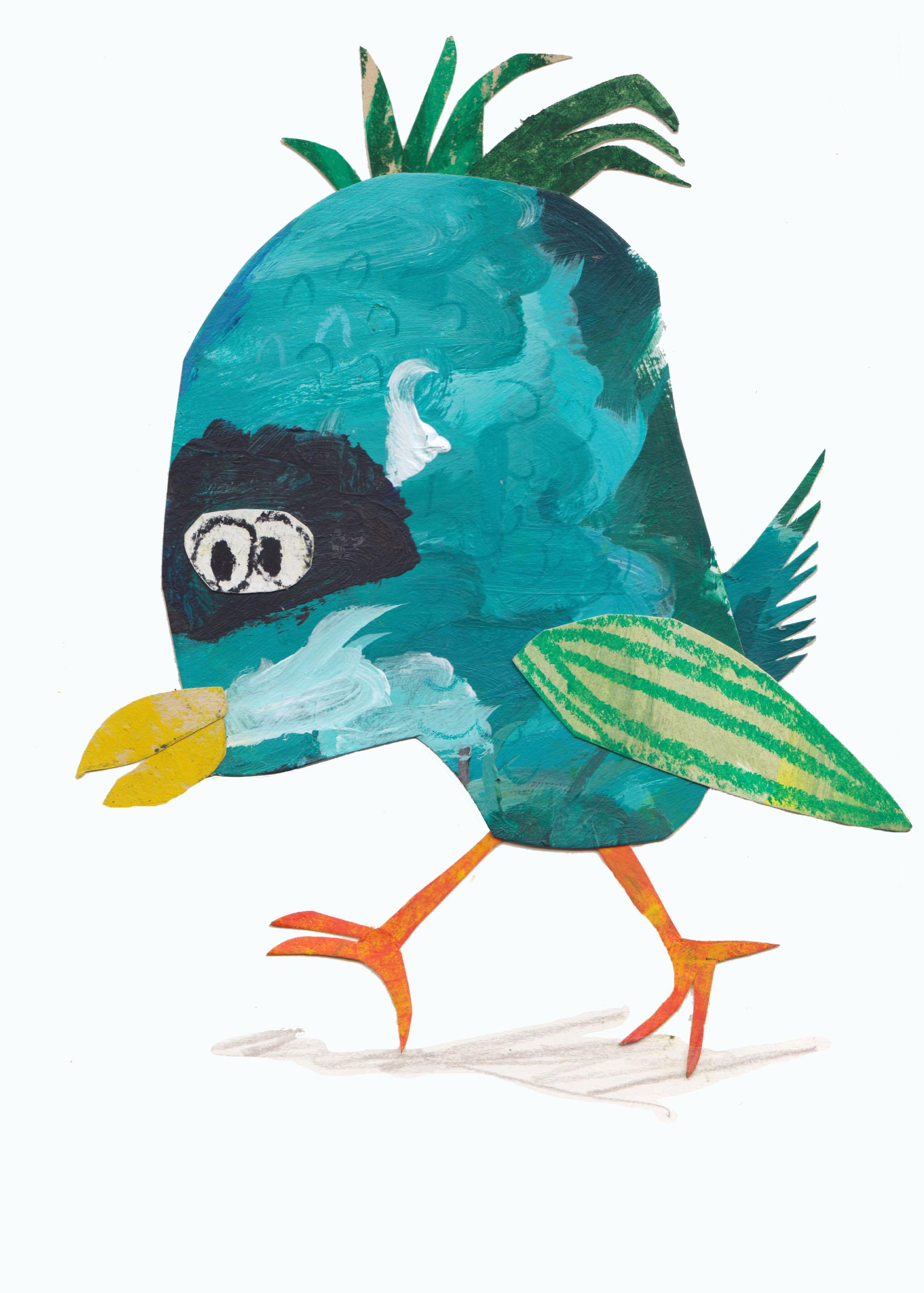 parrot no.315.jpg