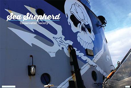 sea-shepherd-1.jpg