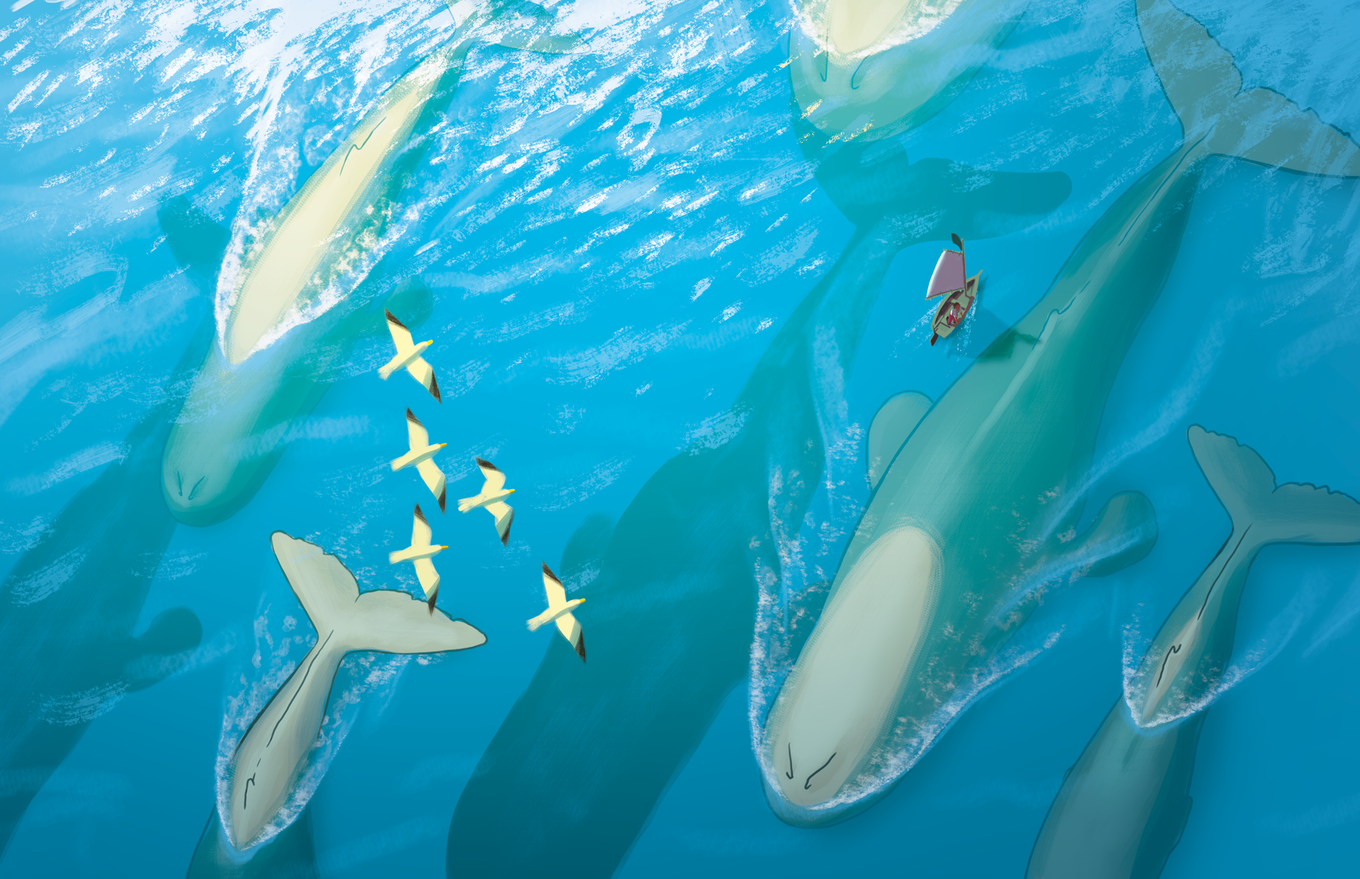 1-whales-1080p.png