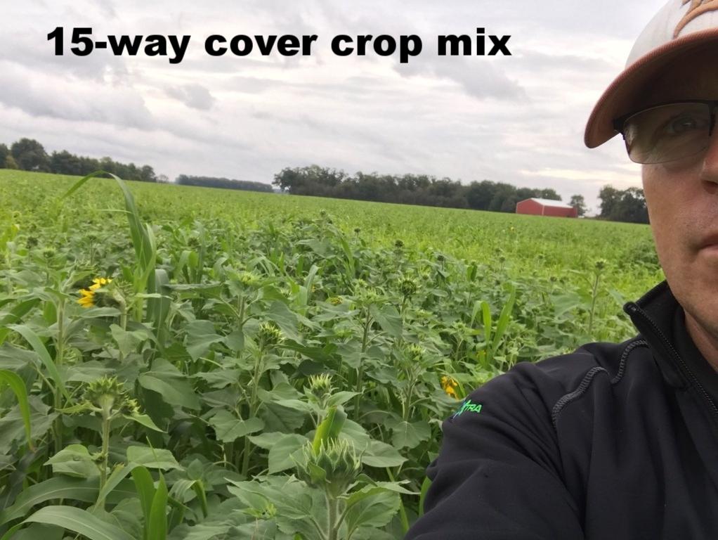 Cover Crop Cocktail Mix Near Hamlet Indiana.jpg