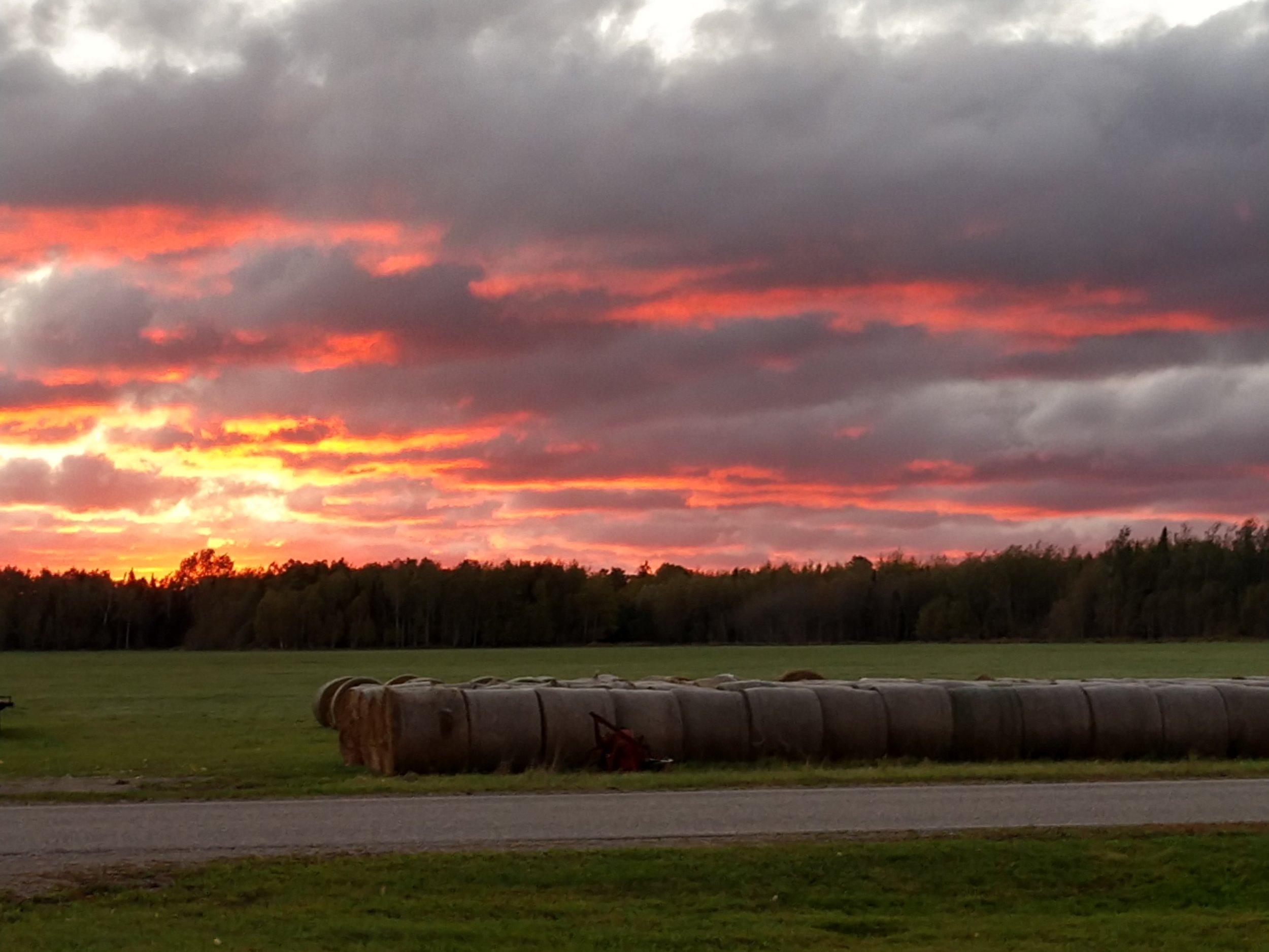 cover photo - orange sky over hay bales.jpg