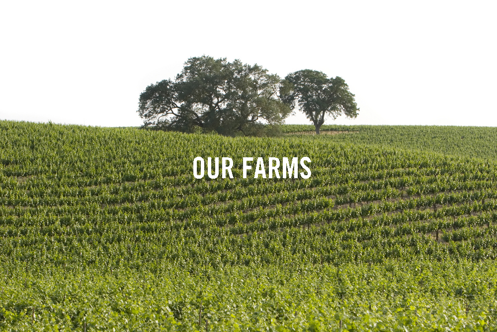 SEE OUR FARMS