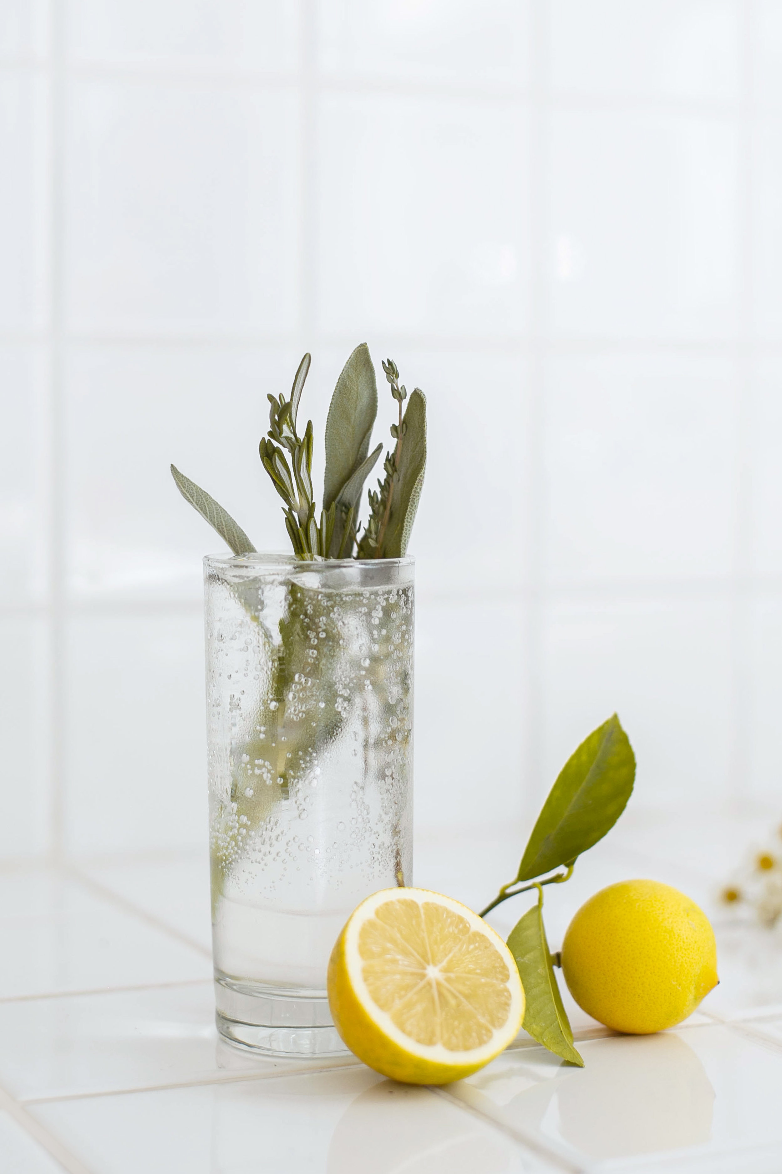 Garden Tonic - 4oz soda2oz ChareauBuild cocktail over ice. Garnish with fresh lemon or herbs.