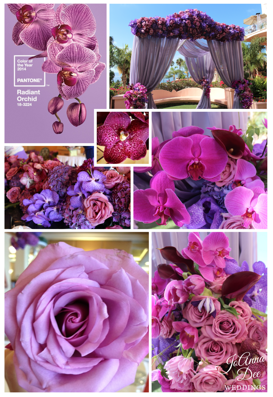 Radiant Orchid: 2014 Pantone Color of the Year   JoAnna Dee Weddings