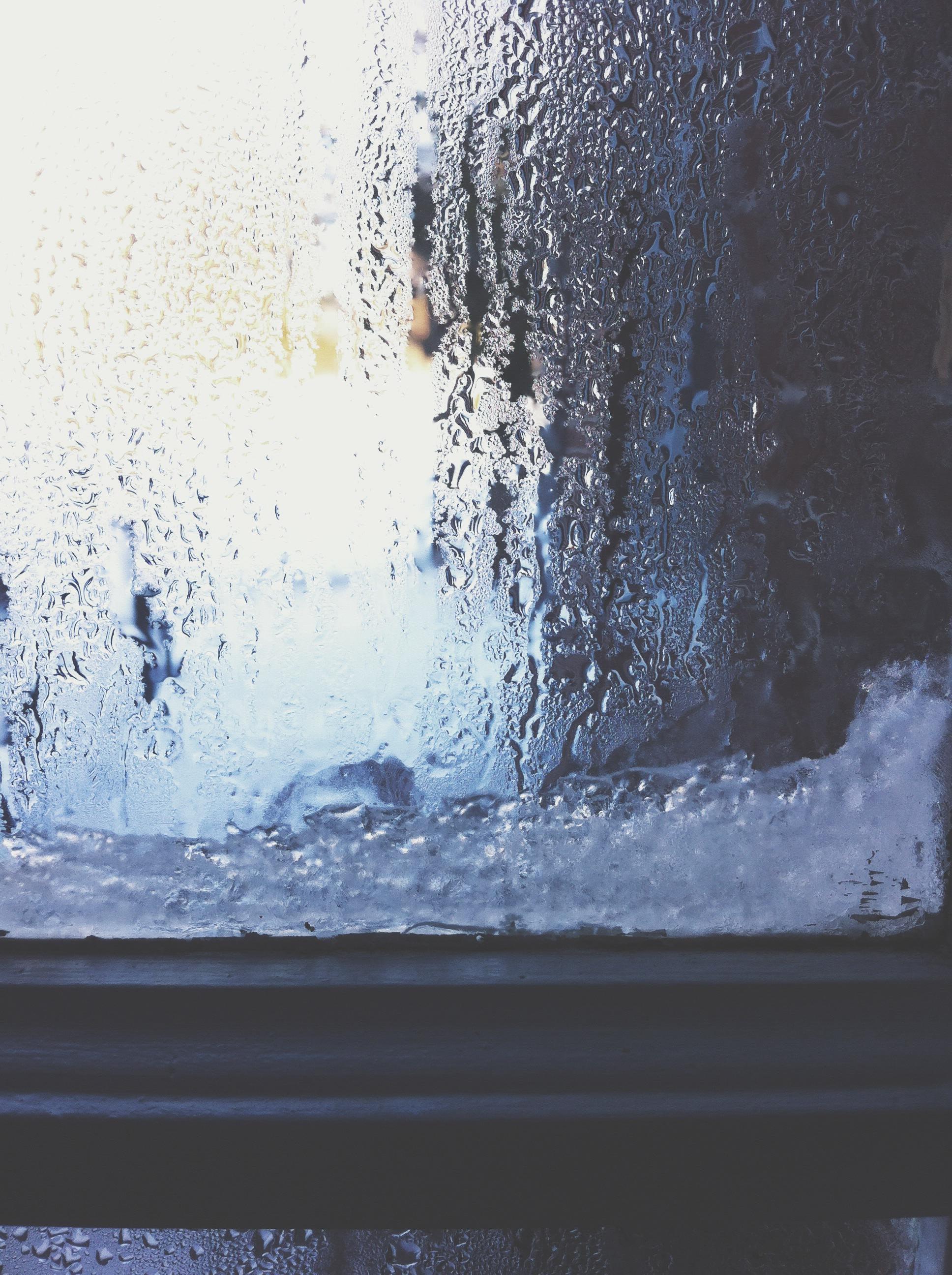 Winter {Pedantic Foodie}
