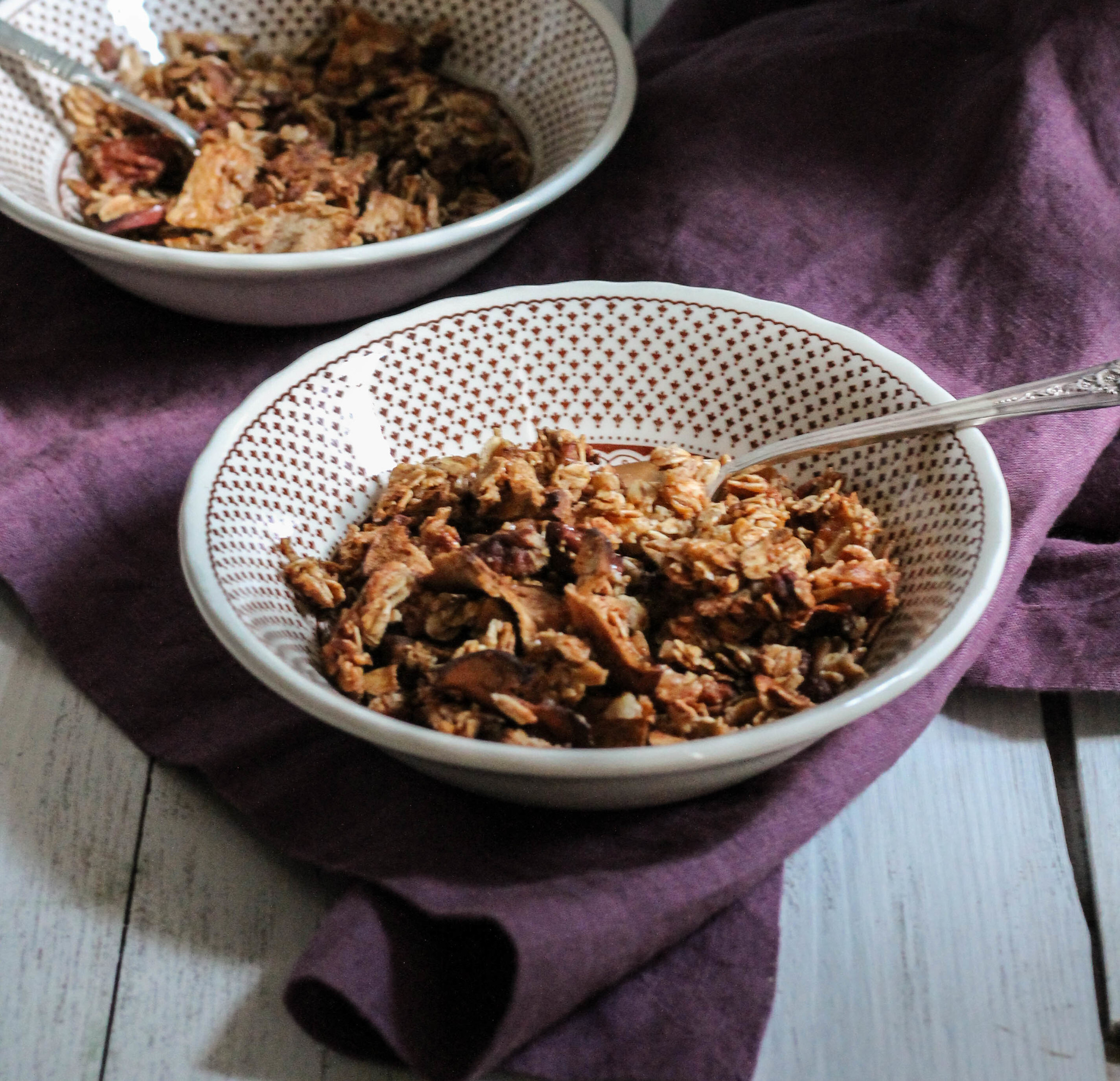 Apple + Oat Cereal {Pedantic Foodie}