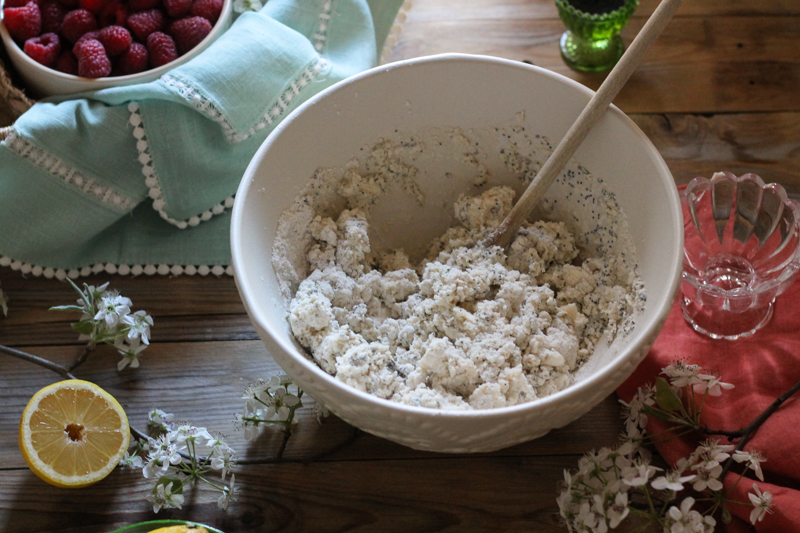 Raspberry Poppyseed & Cornmeal Shortcakes {Pedantic Foodie}