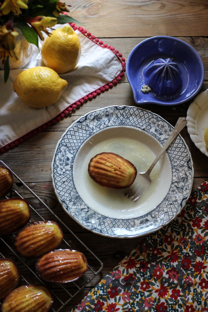 Lemon Poppyseed Madeleines {Pedantic Foodie}