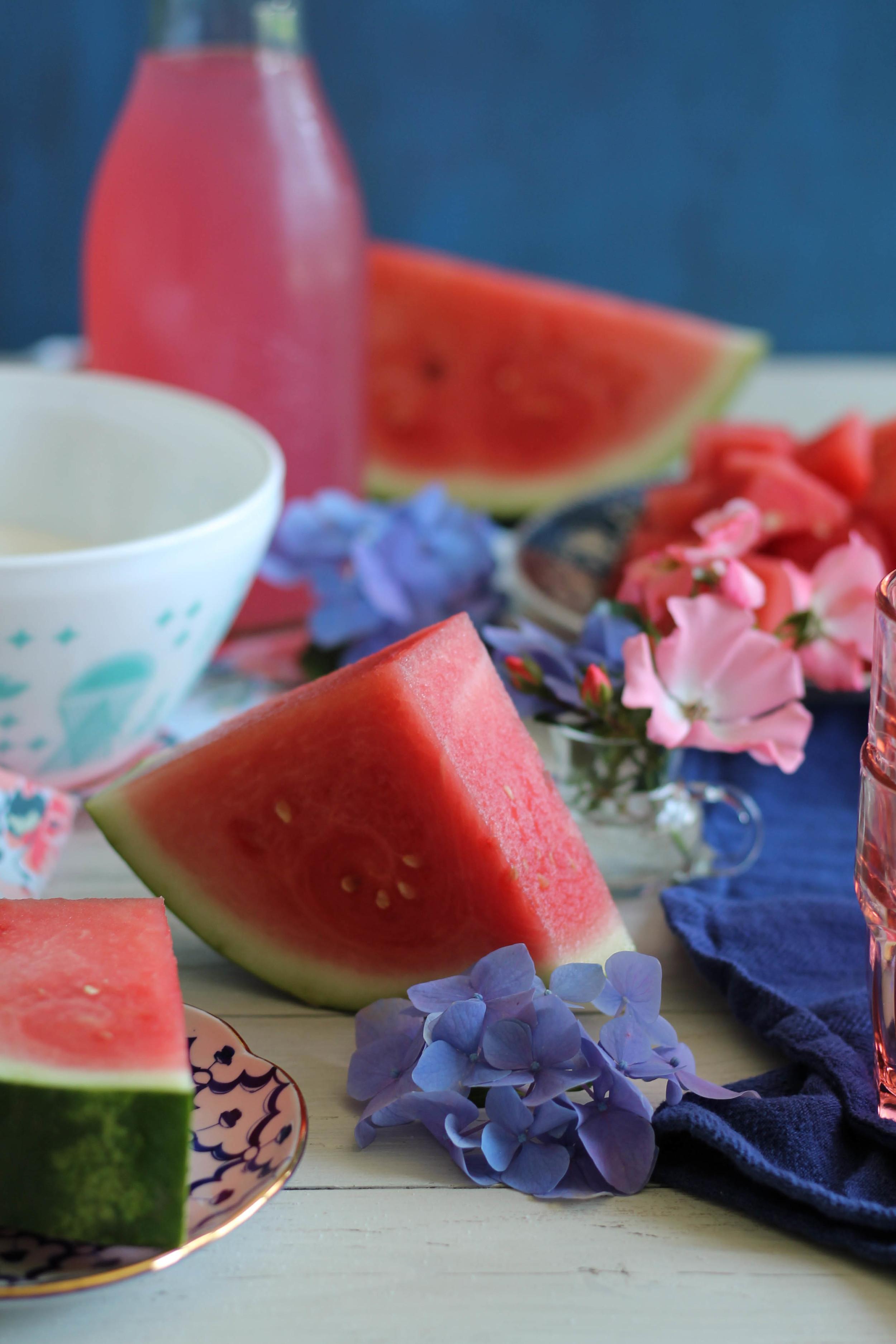 Watermelon Sorbet {Pedantic Foodie}