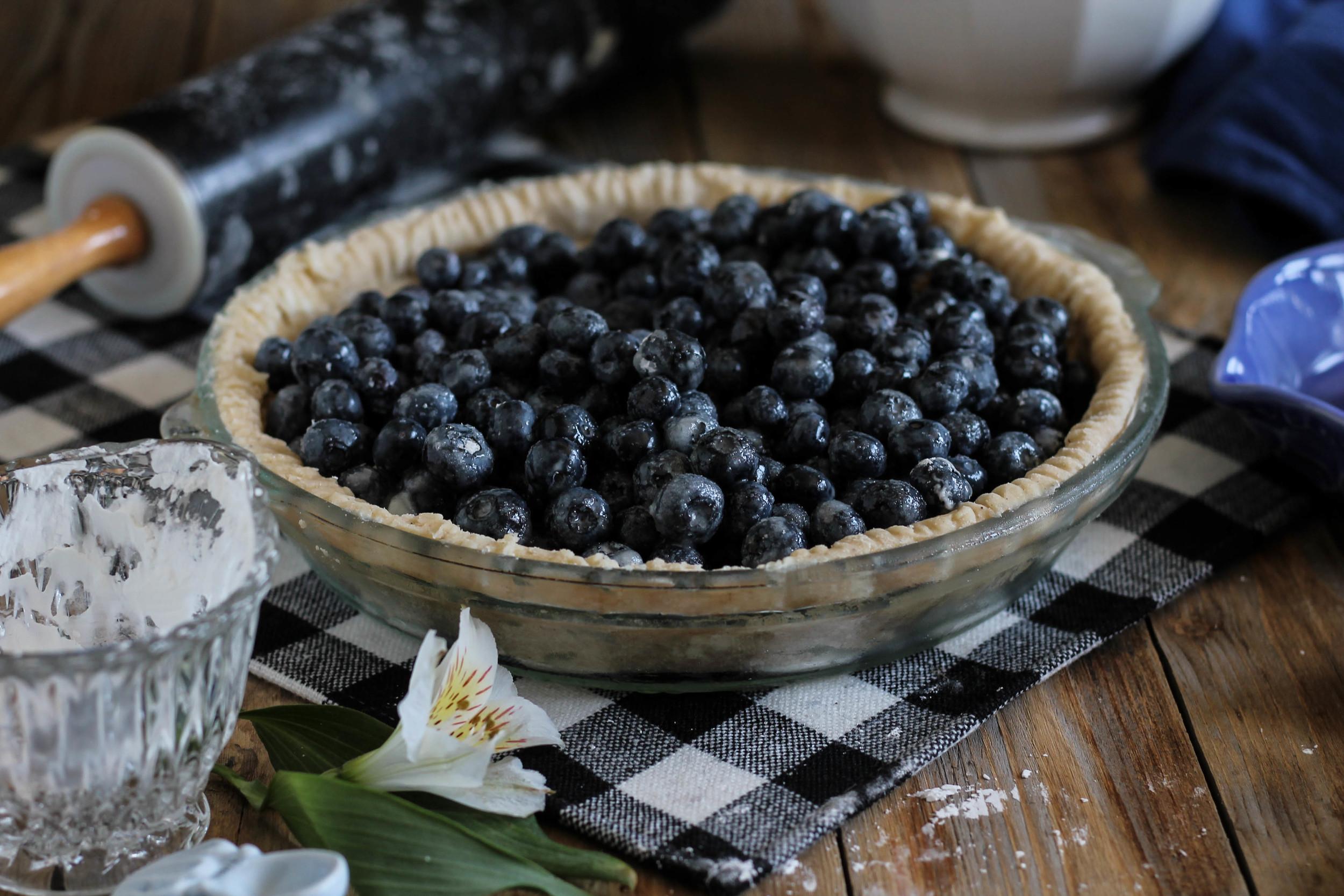 Blueberry Pie {Pedantic Foodie}