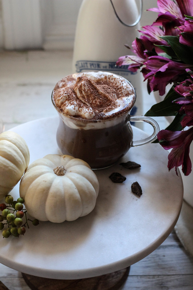 Spicy+Pumpkin+Hot+Chocolate+from+The+Homemade+Kitchen+{The+Pedantic+Foodie}.jpg