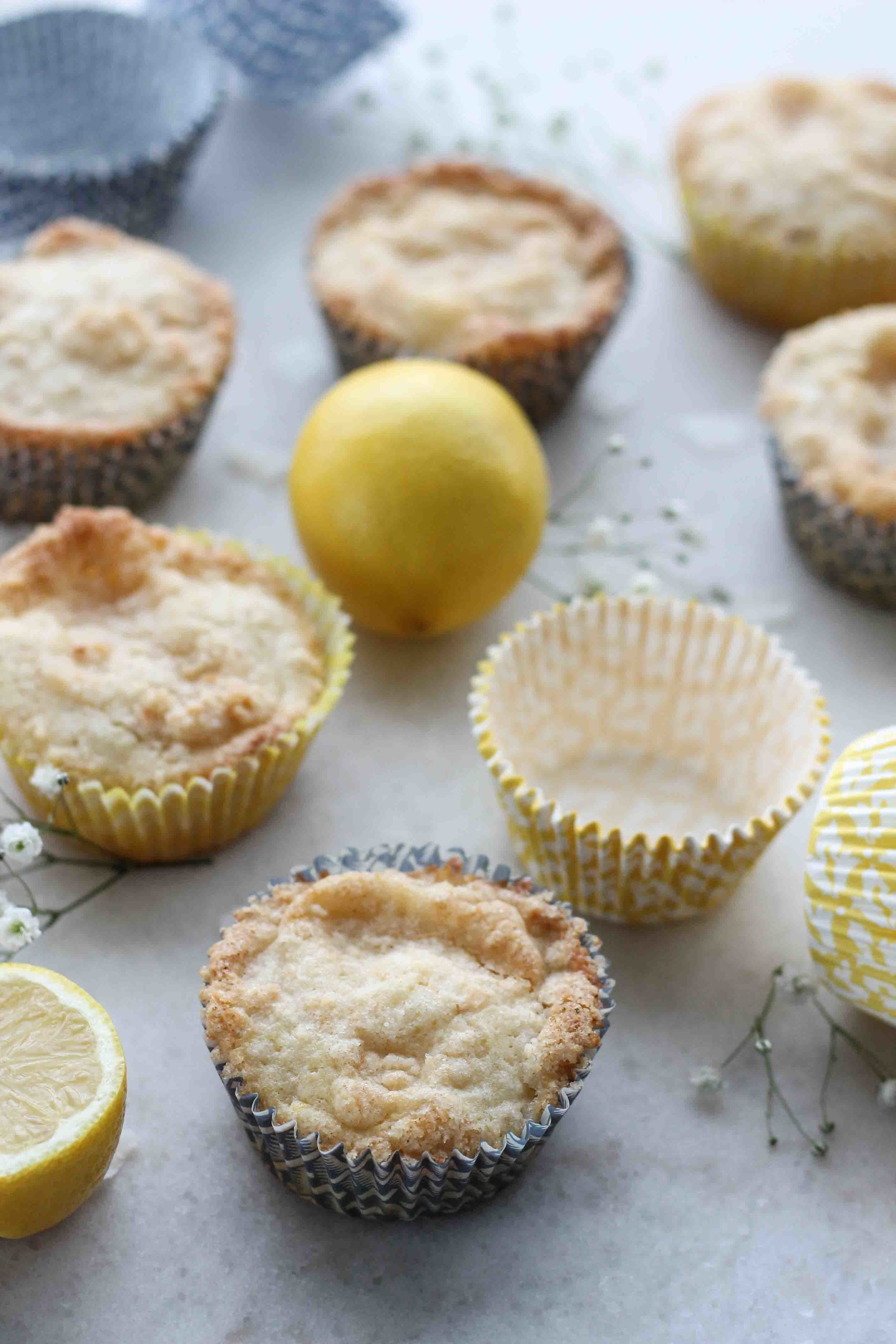 Lemon Coconut Muffins with Coconut Streusel [www.pedanticfoodie.com]