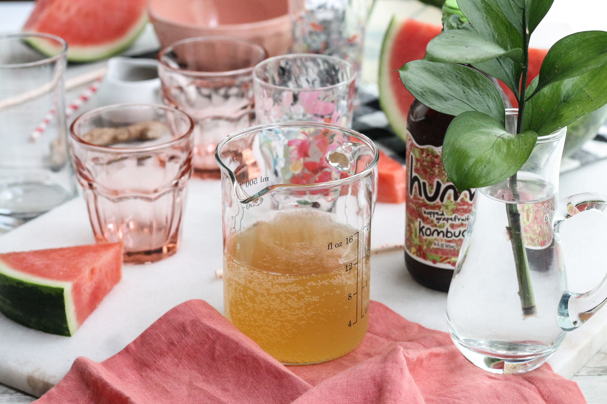 xThis faintly-sweet watermelon kombucha slush is the perfect mocktail for summer afternoons! [ www.pedanticfoodie.com ]