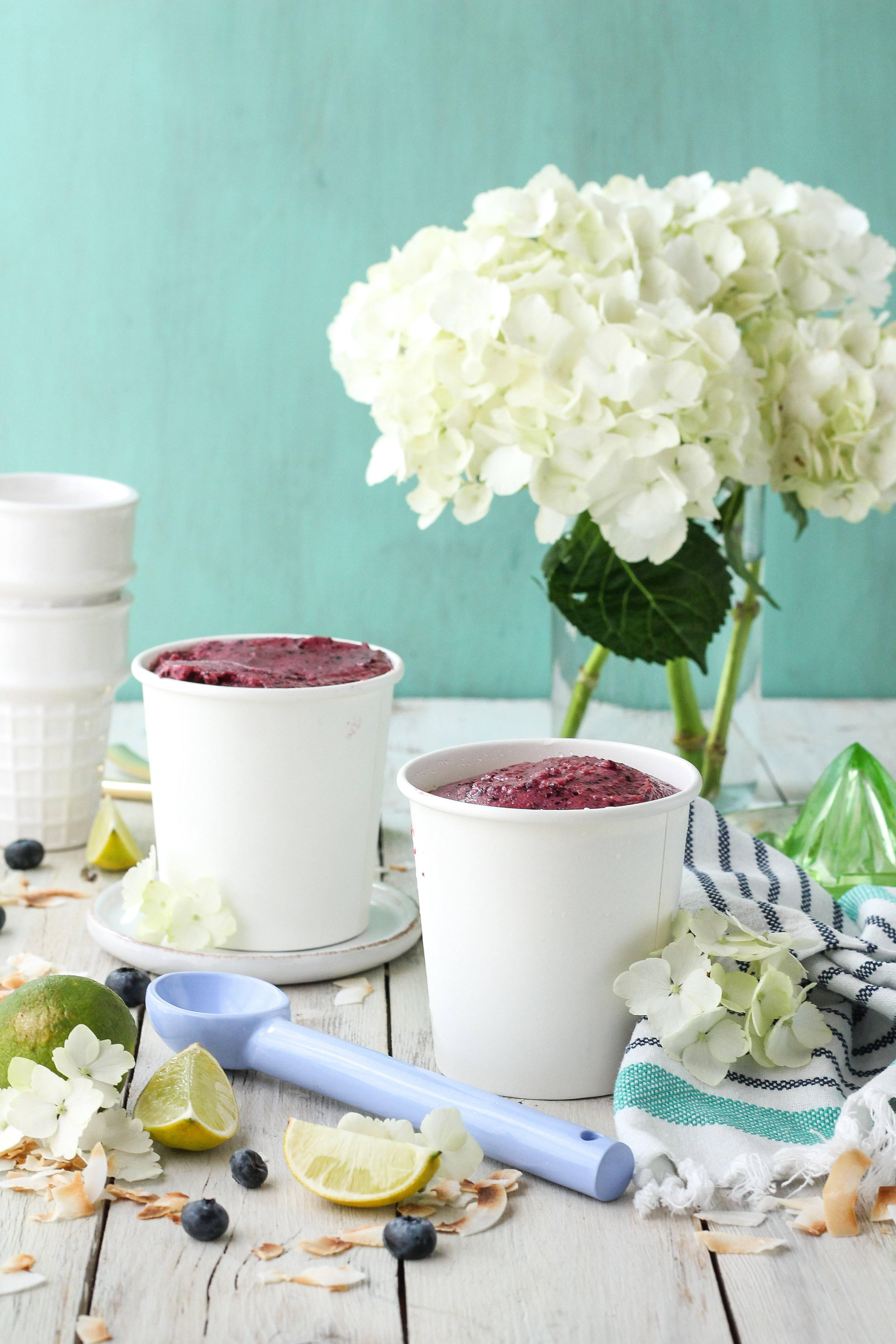 This Blueberry-Lime Coconut Frozen Yogurt is vegan, dairy-free, and full of vitamins and probiotics!  Not to mention it is delicious, refreshing, and incredibly easy to make - all you need is a food-processor!  Find the recipe on WWW.PEDANTICFOODIE.COM!