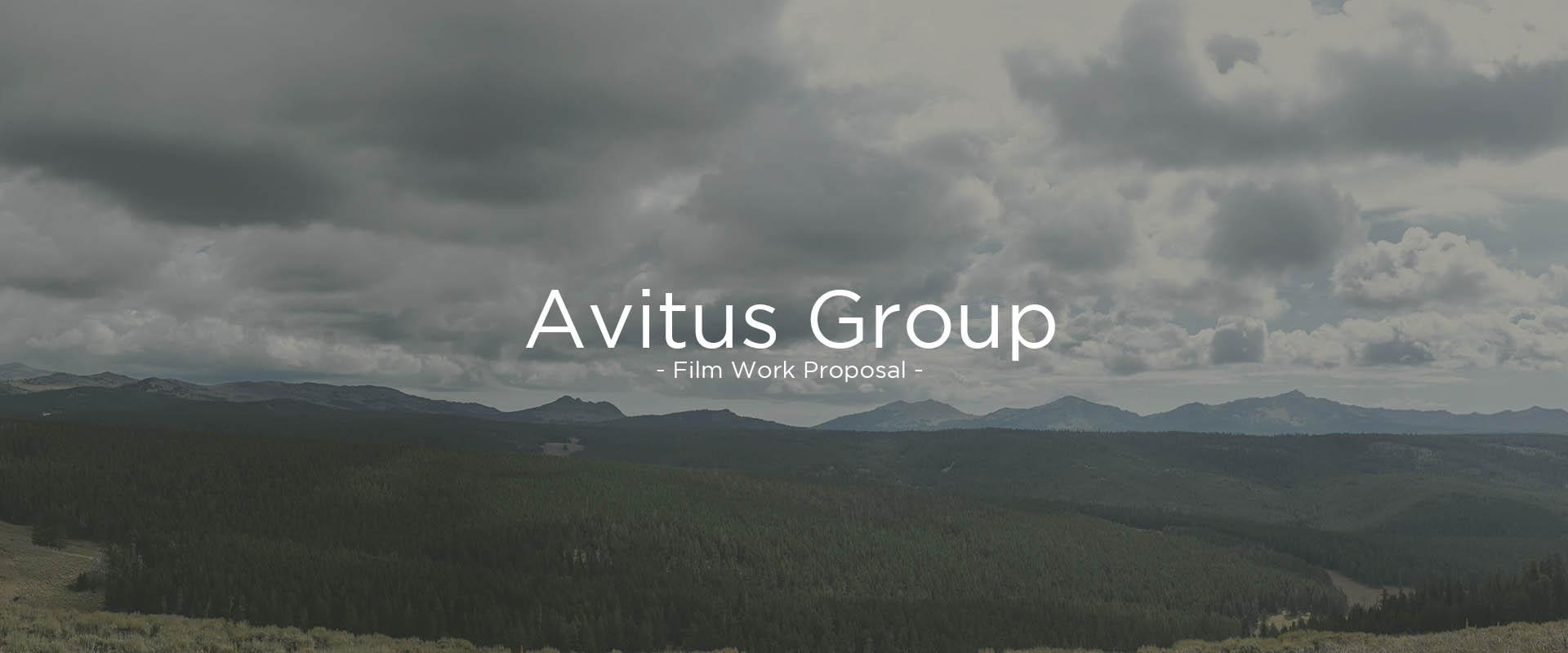 Avitus Group .jpg