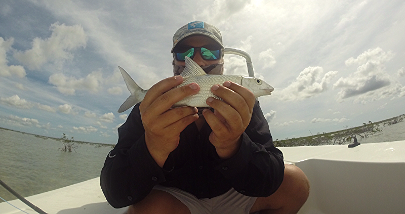 Second Bonefish of the day