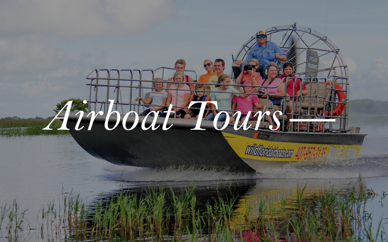 A must do for anyone, airboat tours are a cultural icon in Florida. These tours will take you deep into the swamps to take a look at the Florida Alligator and much more.