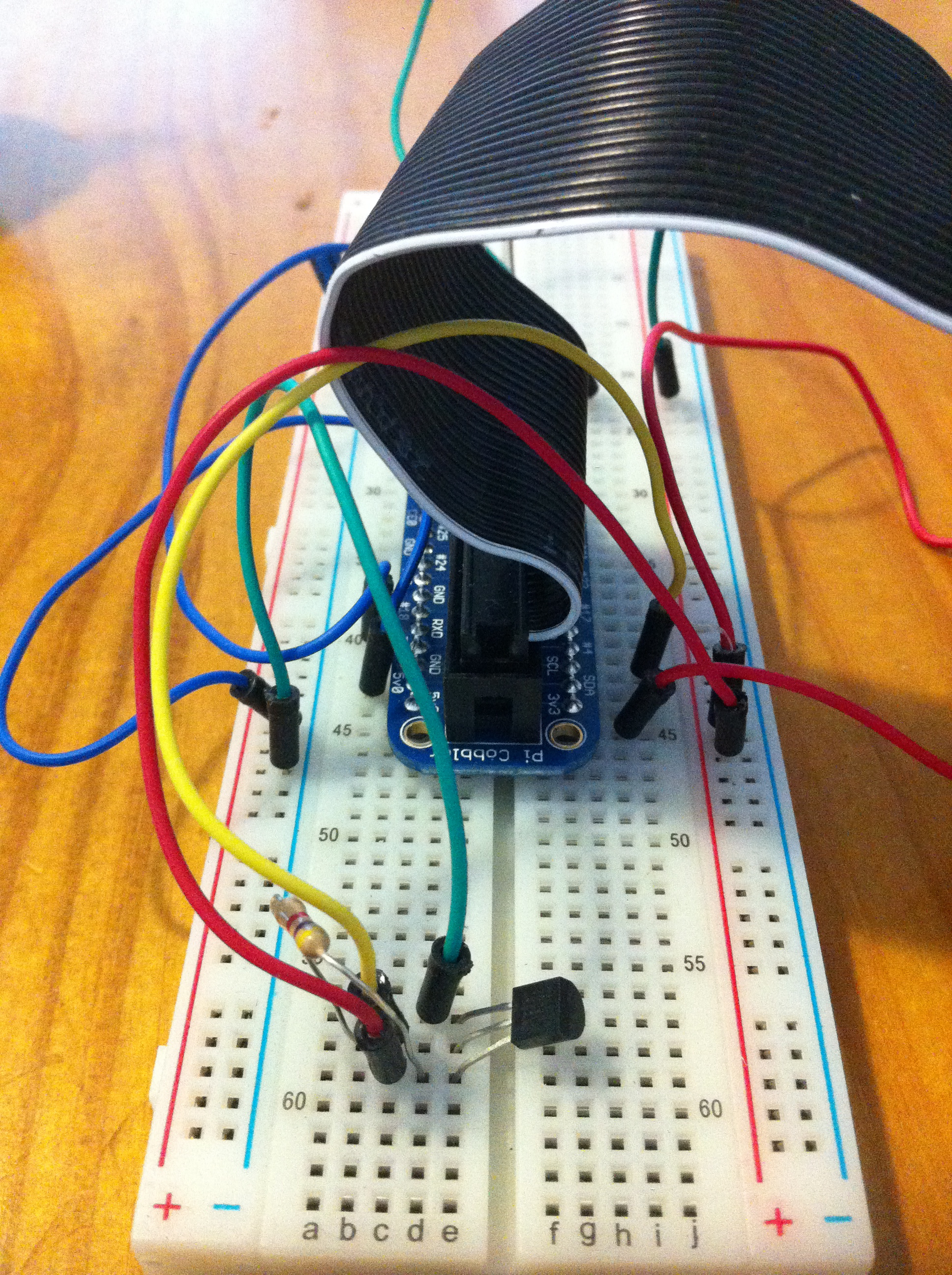 Breadboard with wiring for temperature and light sensors.