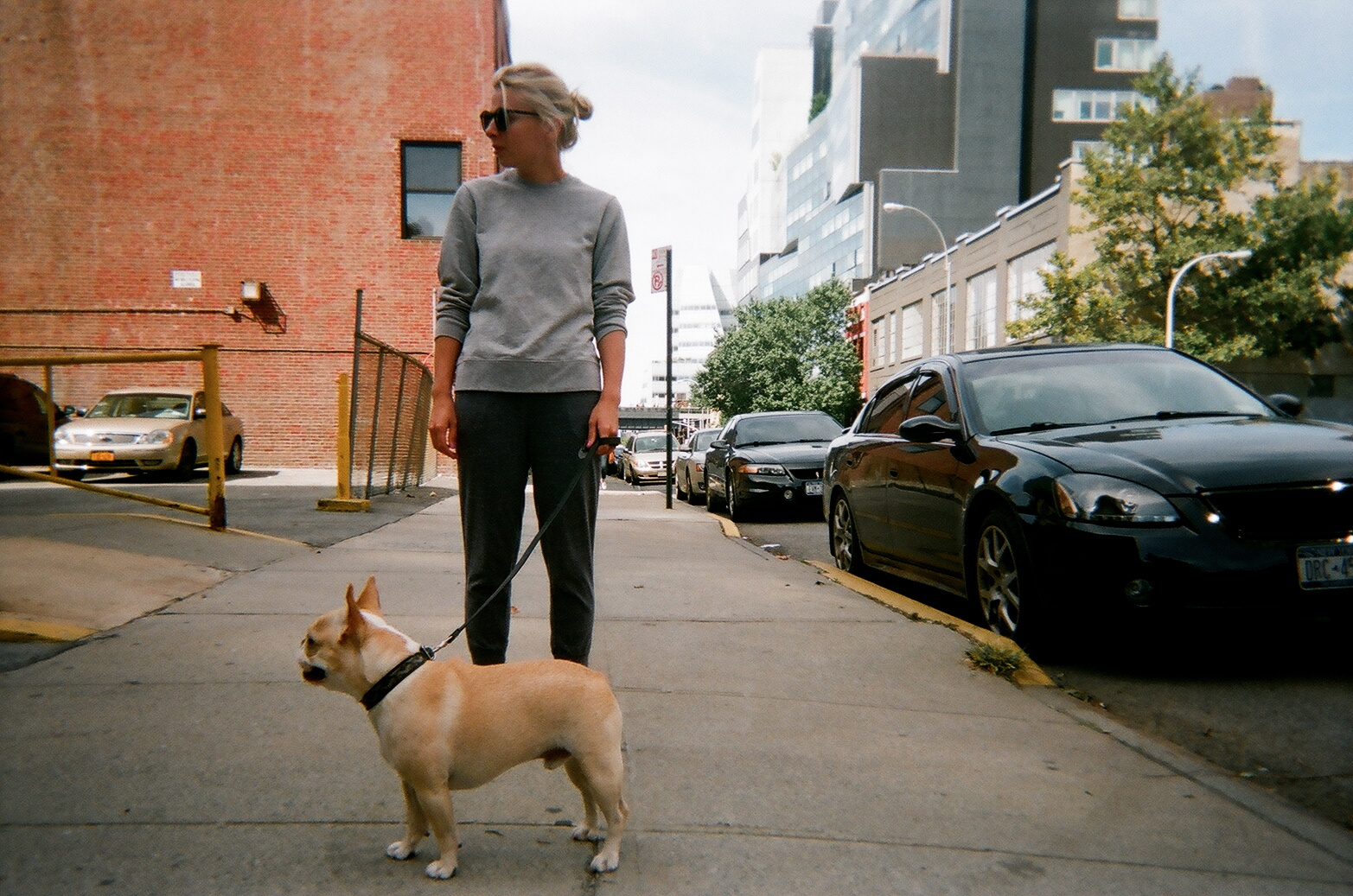 Shot with: FujiFilm Quick Snap Disposible Camera    Collar&Leash by Goyard