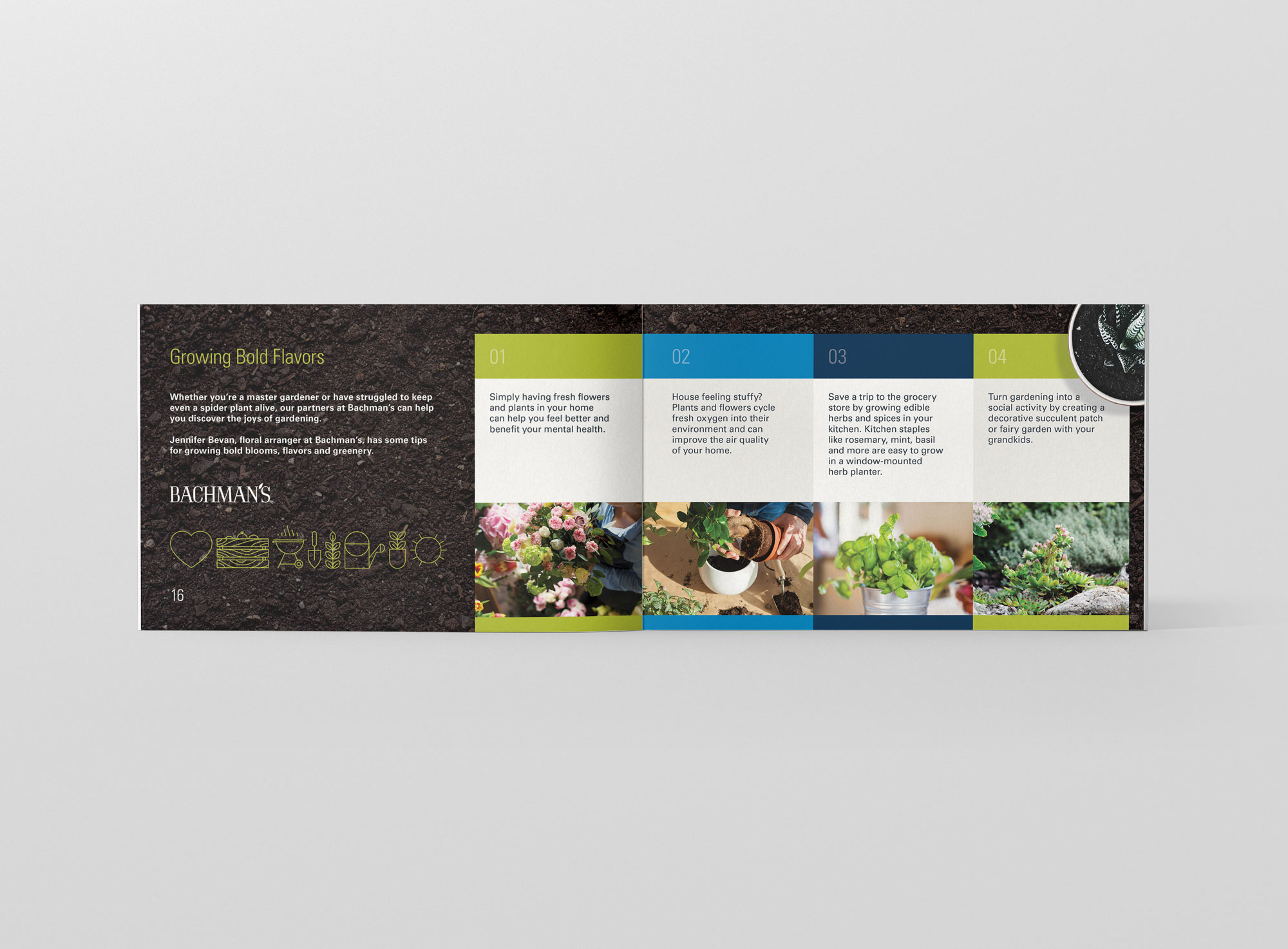 Grow_Bold_Brochure_Open_03.jpg